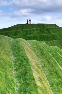 Jenks landscape 1