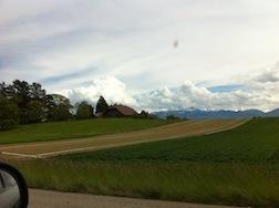 Road farm 1