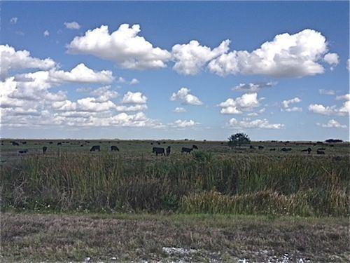 Prairie OK2