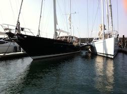 Fat cat sail 1