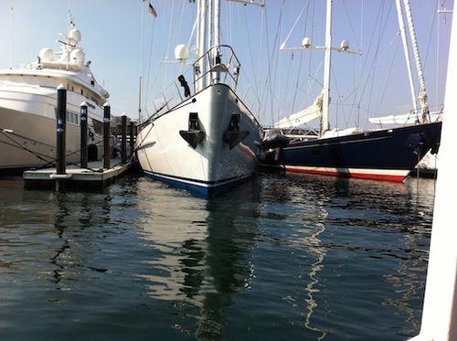 Fat cat sail 2