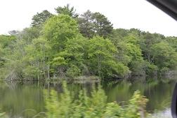 Pond Rt 6A