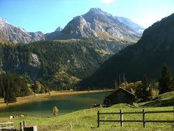 Swiss Alps 1