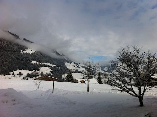GSTAAD DRIVE MOUNTAINS