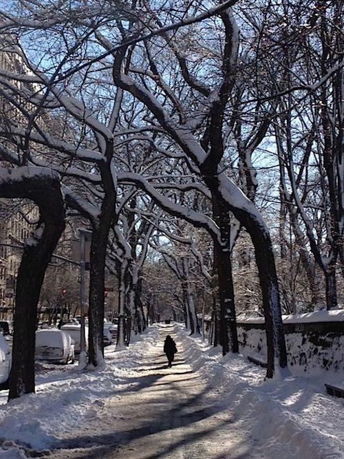 Central park sidewalk