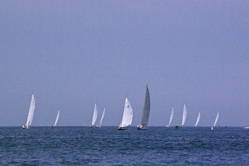 Fleet sailing out harbor