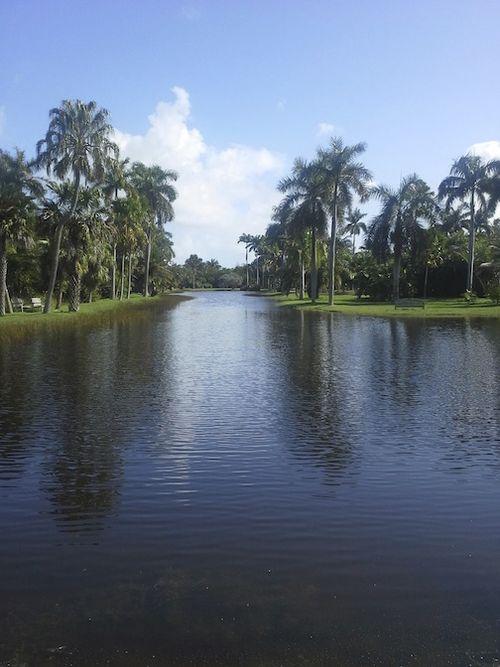 BOTANIC LAKE 7