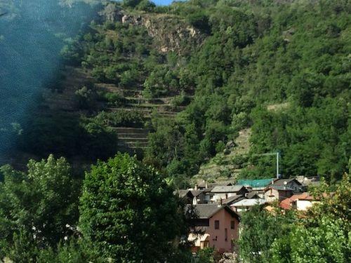 Mount vinyard 7