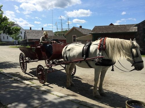 Horse & buggy 7