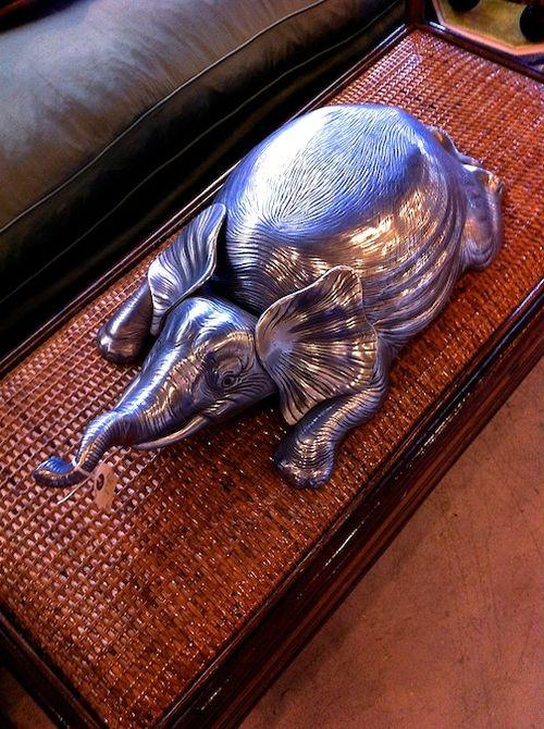 Elephant tourine