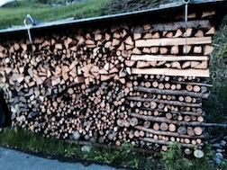 Wood pile 1 3.5
