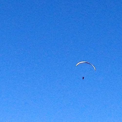PAARA BLUE SKY 7
