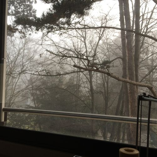 Window fog 7