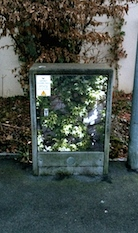 Box shrubs 2.33