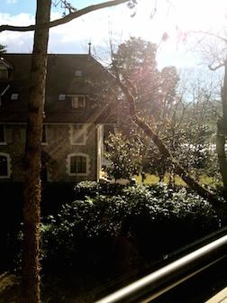 Window sun streak 3.5