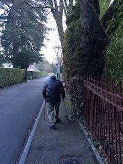 Walk 1 tree 3.5