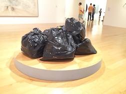 TRASH BAGS 3.5