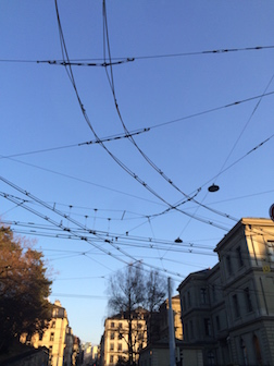 Spiders web electric wires 3.5