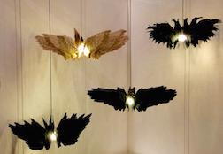 BIRDS CLUSTER 3.5
